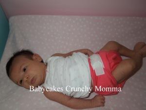 Babycakes Crunchy Momma